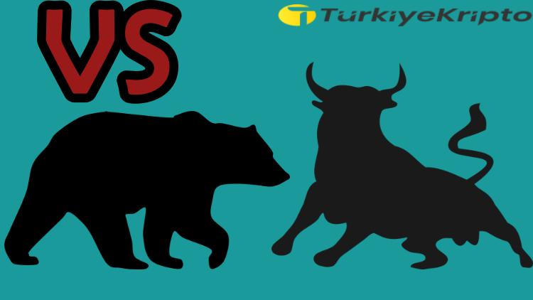 Kripto Para Ayı Piyasası Nedir ? Boğa Piyasası Nedir ?